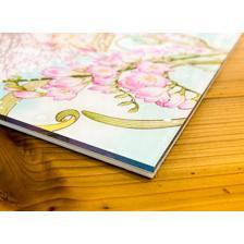 Cardcaptor Sakura: High-Res Acrylic Art